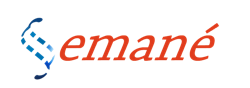emane marketing logo5 resized